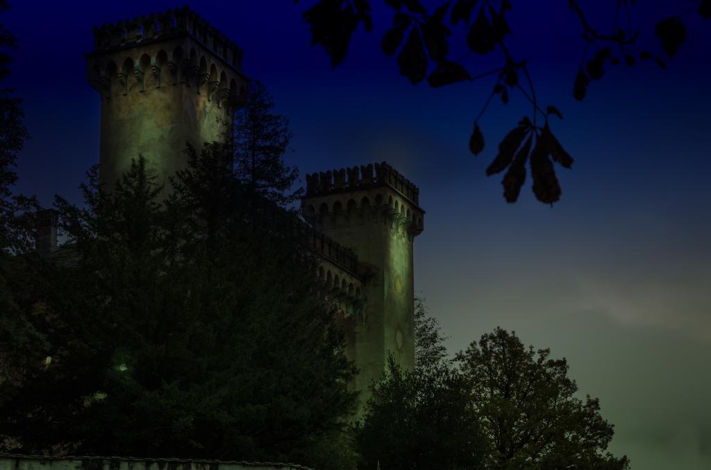The castle  (1 von 1)
